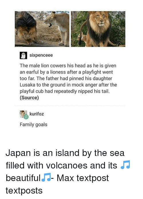 Memes, Cubs, and Japan: six penceee  The male lion cowers his head as he is given  an earful by a lioness after a playfight went  too far. The father had pinned his daughter  Lusaka to the ground in mock anger after the  playful cub had repeatedly nipped his tail.  (Source)  Family goals Japan is an island by the sea filled with volcanoes and its 🎵beautiful🎵- Max textpost textposts