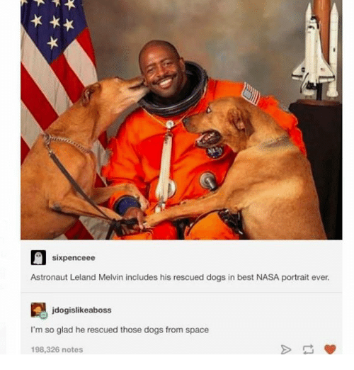 Dogs, Ironic, and Nasa: sixpenceee  Astronaut Leland Melvin includes his rescued dogs in best NASA portrait ever.  jdogislikeaboss  I'm so glad he rescued those dogs from space  198,326 notes