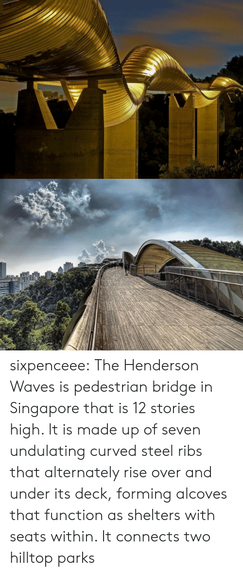 Target, Tumblr, and Waves: sixpenceee:  The Henderson Wavesis pedestrian bridge in Singapore that is 12 stories high. It is made up of seven undulating curved steel ribs that alternately rise over and under its deck, forming alcoves that function as shelters with seats within. It connects two hilltop parks