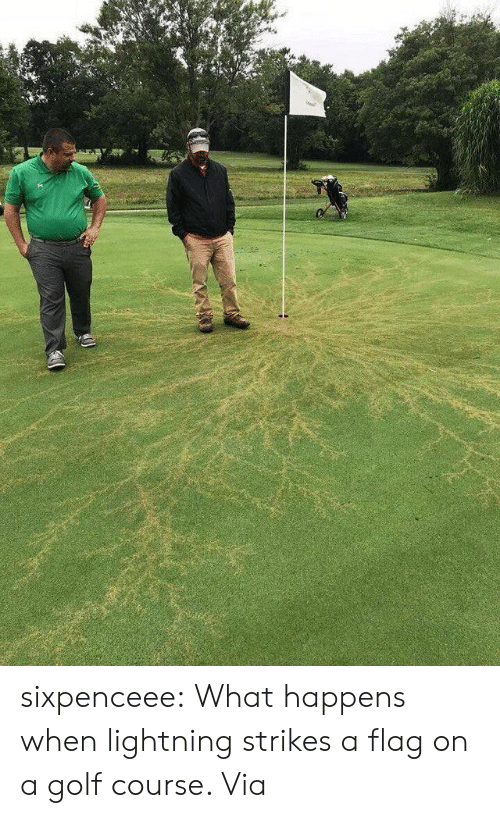 Lightning: sixpenceee:  What happens when lightning strikes a flag on a golf course. Via