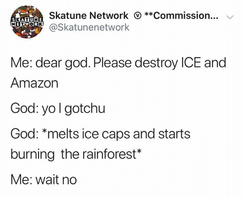 Gotchu: Skatune Network **Commission...  SKATUNE  METOR@Skatunenetwork  Me: dear god. Please destroy ICE and  Amazon  God: yo I gotchu  God: *melts ice caps and starts  burning the rainforest*  Me: wait no