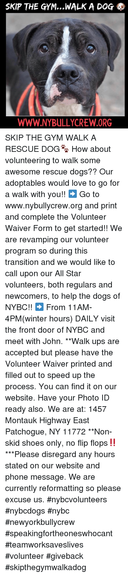 All Star, Dogs, and Gym: SKIP THE GYM, ,,WALK A DOG  WWW.NYBULLYCREW.ORG SKIP THE GYM WALK A RESCUE DOG🐾 How about volunteering to walk some awesome rescue dogs?? Our adoptables would love to go for a walk with you!!  ➡️ Go to www.nybullycrew.org and print and complete the Volunteer Waiver Form to get started!!    We are revamping our volunteer program so during this transition and we would like to call upon our All Star volunteers, both regulars and newcomers, to help the dogs of NYBC!! ➡️ From 11AM-4PM(winter hours)  DAILY visit the front door of NYBC and meet with John.   **Walk ups are accepted but please have the Volunteer Waiver printed and filled out to speed up the process. You can find it on our website. Have your Photo ID ready also.  We are at: 1457 Montauk Highway East Patchogue, NY 11772 **Non-skid shoes only, no flip flops‼️ ***Please disregard any hours stated on our website and phone message. We are currently reformatting so please excuse us.  #nybcvolunteers #nybcdogs  #nybc #newyorkbullycrew  #speakingfortheoneswhocant #teamworksaveslives #volunteer #giveback #skipthegymwalkadog