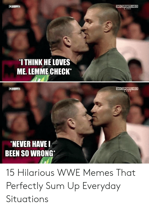 Hilarious Wwe: SKY SPORTS HD3  LIVE  *I THINK HE LOVES  ME. LEMME CHECK*  SKY SPORTS HD 3  LIVE  NEVER HAVE  BEEN SO WRONG 15 Hilarious WWE Memes That Perfectly Sum Up Everyday Situations