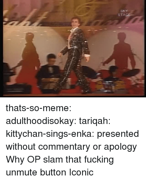 Meme Tumblr: SKY  STA thats-so-meme:  adulthoodisokay:  tariqah:  kittychan-sings-enka:  presented without commentary or apology  Why OP   slam that fucking unmute button   Iconic