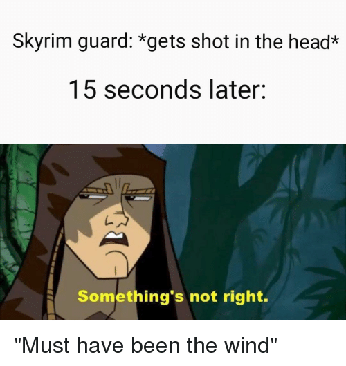 Skyrim Guard *Gets Shot in the Head* 15 Seconds Later