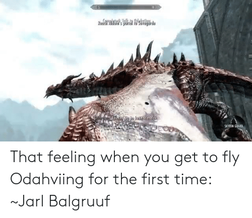 SKYRIM GUARD That Feeling When You Get to Fly Odahviing for