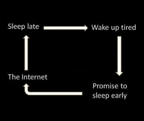 Dank, Internet, and Sleep: Sleep late  Wake up tired  The Internet  Promise to  sleep early