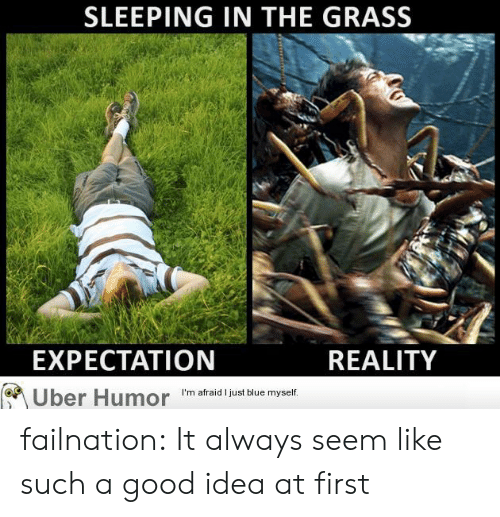 A Good Idea: SLEEPING IN THE GRASS  EXPECTATION  REALITY  I'm afraid I just blue myself  Uber Humor failnation:  It always seem like such a good idea at first
