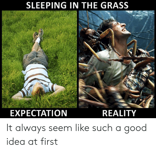 A Good Idea: SLEEPING IN THE GRASS  EXPECTATION  REALITY It always seem like such a good idea at first
