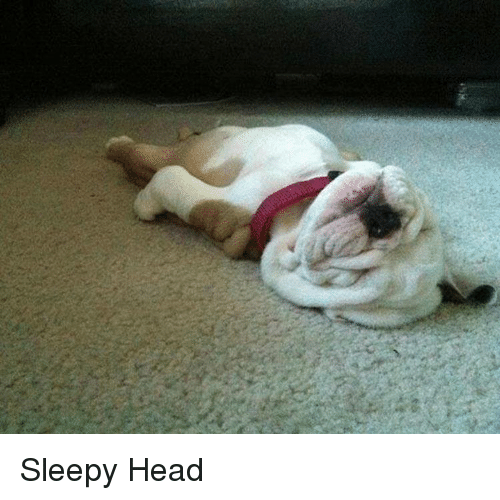 Sleepy Head: Sleepy Head