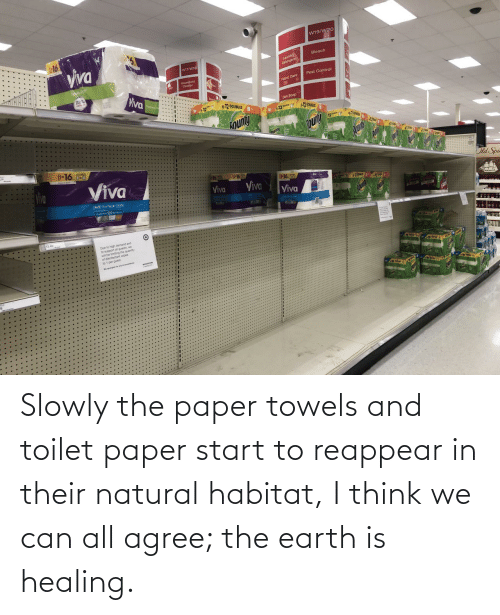 Healing: Slowly the paper towels and toilet paper start to reappear in their natural habitat, I think we can all agree; the earth is healing.