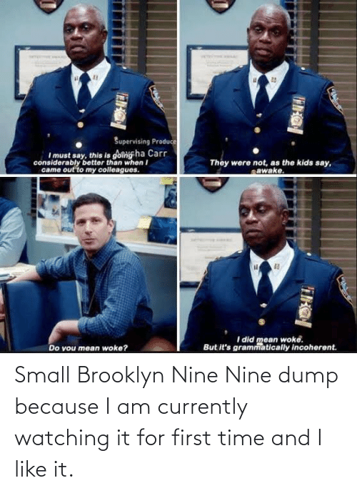 First Time: Small Brooklyn Nine Nine dump because I am currently watching it for first time and I like it.