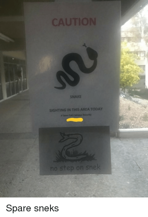 Snake, Today, and This: SNAKE  SIGHTING IN THIS AREA TODAY Spare sneks