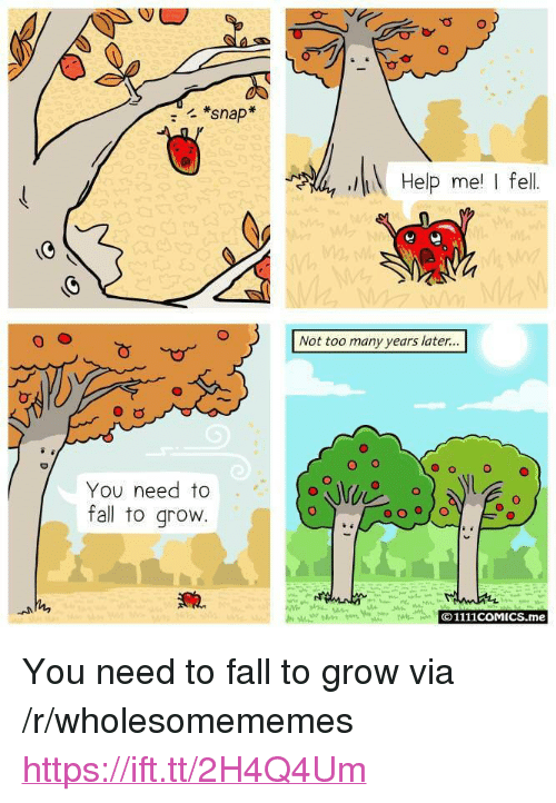 "Fall, Help, and Snap: *snap  Help me I fel  Not too many years later...  O o  O  You need to  fall to grovw  O1111coMICS.me <p>You need to fall to grow via /r/wholesomememes <a href=""https://ift.tt/2H4Q4Um"">https://ift.tt/2H4Q4Um</a></p>"