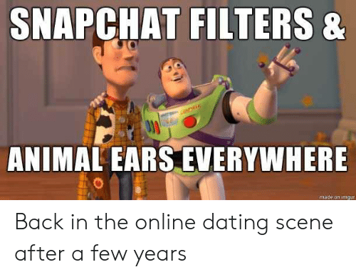 animal ears: SNAPCHAT FILTERS &  fi  ANIMAL EARS EVERYWHERE  made on imgur Back in the online dating scene after a few years