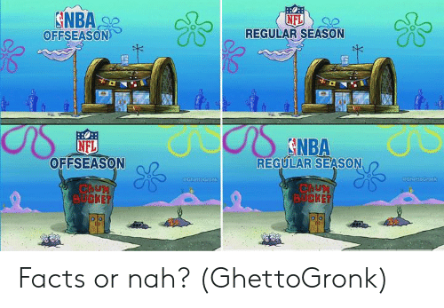 Facts, Nfl, and Nah: SNBA  OFFSEASON  NFL  REGULAR SEASON  DS  NFL  OFFSEASON  REGULAR SEASON  OahattoGronk  CahottoGronk  ChuM  BUCKET  ChuM  BUCKET  oo Facts or nah? (GhettoGronk)