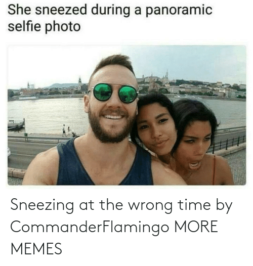 wrong: Sneezing at the wrong time by CommanderFlamingo MORE MEMES