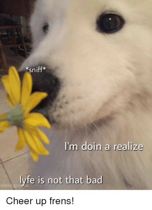 Cheerfulness: *sniff*  I'm doin a realize  lyfe is not that bad Cheer up frens!