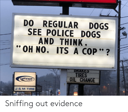 Sniffing: Sniffing out evidence