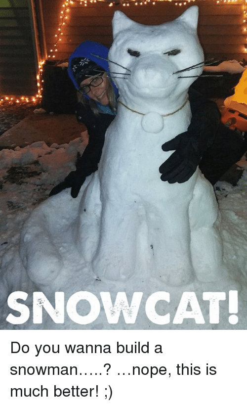 Do You Wanna Build: SNOW CAT! Do you wanna build a snowman…..?  …nope, this is much better! ;)