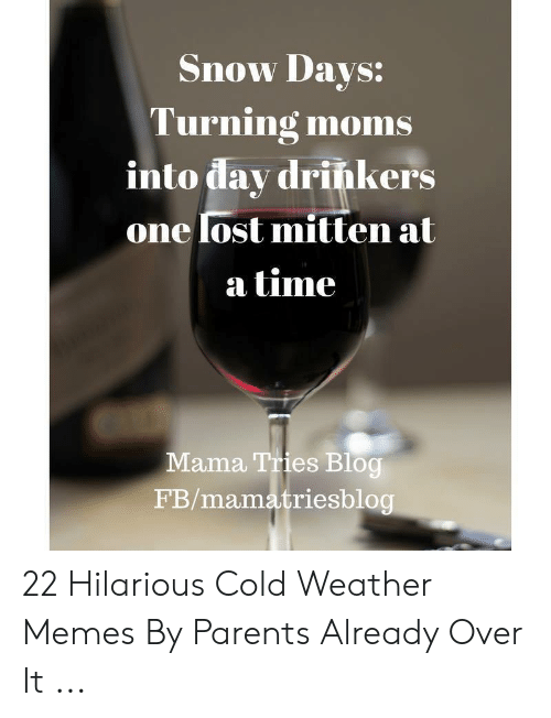 Funny Snow Memes: Snow Davs:  Turning moms  into dav drińkers  onelost mitten at  a time  Mama Tries Blog  FB/mamatriesblog 22 Hilarious Cold Weather Memes By Parents Already Over It ...
