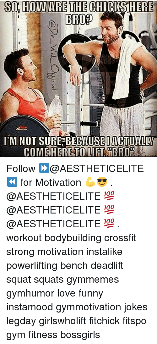 Gym, Crossfit, and Squat: so, HOWARE THE CIRKSHERE  S04H0WARETHECHI CIS!HERE  I'M NOT SURE-BECAUSE|ACTUALBU  COMEiHERETOUIET iBR0 .  @Dr-Will C%icial Follow ⏩@AESTHETICELITE ⏪ for Motivation 💪😎 . @AESTHETICELITE 💯 @AESTHETICELITE 💯 @AESTHETICELITE 💯 . workout bodybuilding crossfit strong motivation instalike powerlifting bench deadlift squat squats gymmemes gymhumor love funny instamood gymmotivation jokes legday girlswholift fitchick fitspo gym fitness bossgirls