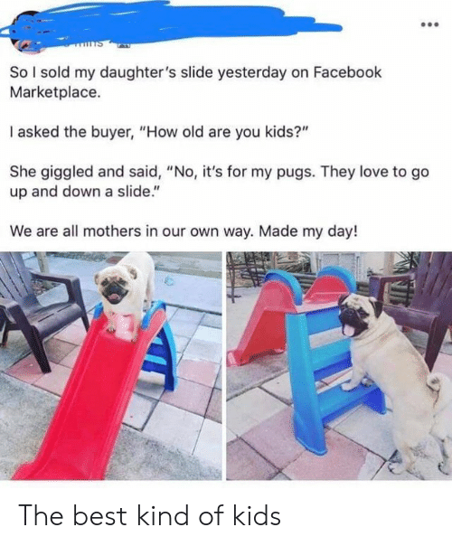 "Facebook, Love, and Best: So I sold my daughter's slide yesterday on Facebook  Marketplace  I asked the buyer, ""How old are you kids?""  She giggled and said, ""No, it's for my pugs. They love to go  up and down a slide.""  We are all mothers in our own way. Made my day! The best kind of kids"