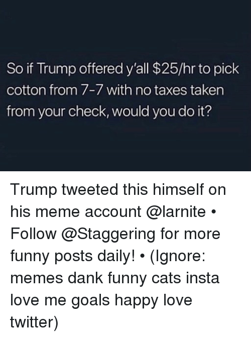 Cats, Dank, and Funny: So if Trump offered y'all $25/hr to pick  cotton from 7-7 with no taxes taken  from your check, would you do it? Trump tweeted this himself on his meme account @larnite • ➫➫➫ Follow @Staggering for more funny posts daily! • (Ignore: memes dank funny cats insta love me goals happy love twitter)