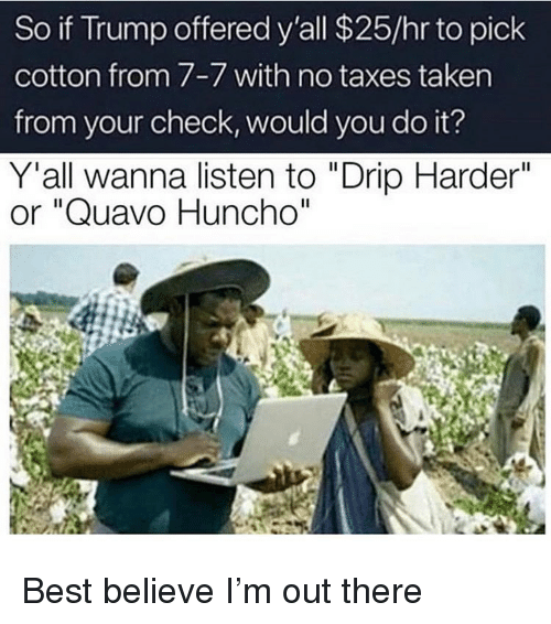 """Funny, Quavo, and Taken: So if Trump offered y'all $25/hr to pick  cotton from 7-7 with no taxes taken  from your check, would you do it?  Y'all wanna listen to """"Drip Harder""""  or """"Quavo Huncho""""  Il Best believe I'm out there"""