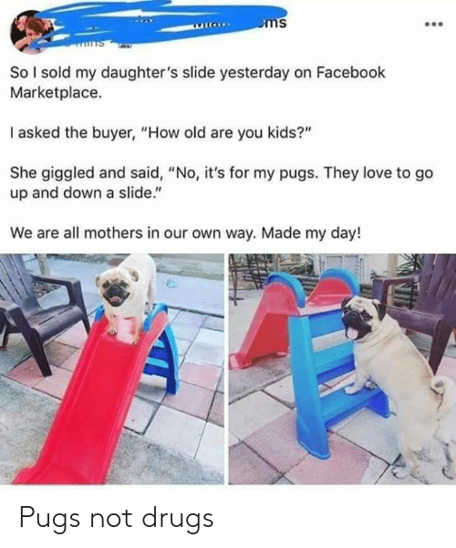 "Dank, Drugs, and Facebook: So l sold my daughter's slide yesterday on Facebook  Marketplace.  I asked the buyer, ""How old are you kids?""  She giggled and said, ""No, it's for my pugs. They love to go  up and down a slide.""  We are all mothers in our own way. Made my day! Pugs not drugs"