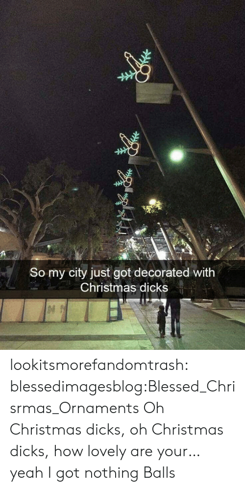 Blessed, Christmas, and Dicks: So my city just got decorated with  Christmas dicks lookitsmorefandomtrash:  blessedimagesblog:Blessed_Chrisrmas_Ornaments Oh Christmas dicks, oh Christmas dicks, how lovely are your… yeah I got nothing  Balls