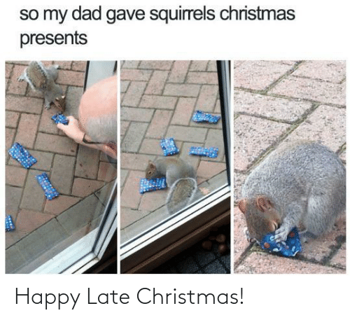late: so my dad gave squirrels christmas  presents Happy Late Christmas!