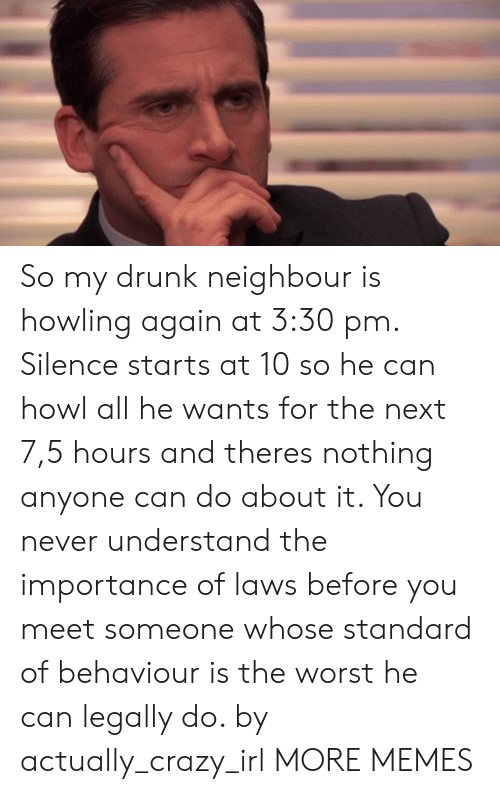 howling: So my drunk neighbour is howling again at 3:30 pm. Silence starts at 10 so he can howl all he wants for the next 7,5 hours and theres nothing anyone can do about it. You never understand the importance of laws before you meet someone whose standard of behaviour is the worst he can legally do. by actually_crazy_irl MORE MEMES