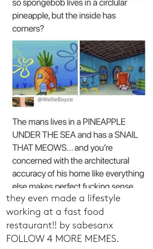 Meows: sO spongebob lives in a circlular  pineapple, but the inside has  corners?  @WellieBoyce  The mans lives in a PINEAPPLE  UNDER THE SEA and has a SNAIL  THAT MEOWS... and you're  concerned with the architectural  accuracy of his home like everything  else makes nerfect fı uckina sense. they even made a lifestyle working at a fast food restaurant!! by sabesanx FOLLOW 4 MORE MEMES.