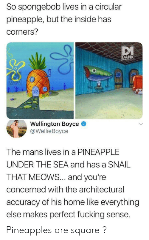 Dank, Fucking, and SpongeBob: So spongebob lives in a circular  pineapple, but the inside has  corners?  DANK  MEMEOLOGY  DANK  MEMICIOG  Wellington Boyce  @WellieBoyce  The mans lives in a PINEAPPLE  UNDER THE SEA and has a SNAIL  THAT MEOWS... and you're  concerned with the architectural  accuracy of his home like everything  else makes perfect fucking sense. Pineapples are square ?