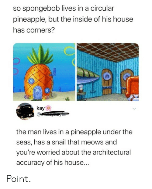 Pineapple: so spongebob lives in a circular  pineapple, but the inside of his house  has corners?  kay  the man lives in a pineapple under the  seas, has a snail that meows and  you're worried about the architectural  accuracy of his house... Point.