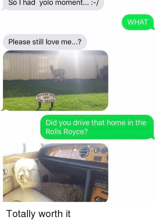 Love, Yolo, and Drive: So T had yolo moment... -/  WHAT  Please still love me...?  ASE KEE  OFF  HE GRASS  Did you drive that home in the  Rolls Royce?