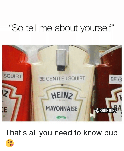 "Memes, Squirt, and 🤖: ""So tell me about yourself""  SQUIRT  BE GENTLE I SQUIRT  BE G  HEINZ  1869  MAYONNAISE  @BRUHJOBS That's all you need to know bub 😘"