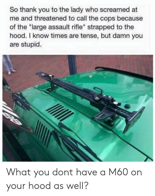 """The Hood, Thank You, and Hood: So thank you to the lady who screamed at  me and threatened to call the cops because  of the """"large assault rifle"""" strapped to the  hood. I know times are tense, but damn you  are stupid. What you dont have a M60 on your hood as well?"""