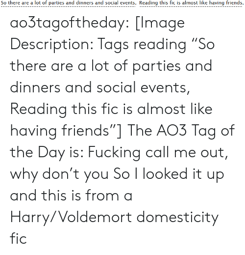 """Friends, Fucking, and Target: So there are a lot of parties and dinners and social events, Reading this fic is almost like having friends, ao3tagoftheday:  [Image Description: Tags reading """"So there are a lot of parties and dinners and social events, Reading this fic is almost like having friends""""]  The AO3 Tag of the Day is: Fucking call me out, why don't you   So I looked it up and this is from a Harry/Voldemort domesticity fic"""