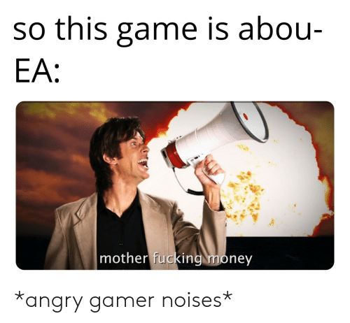 gamer: so this game is abou-  EA:  mother fucking money *angry gamer noises*