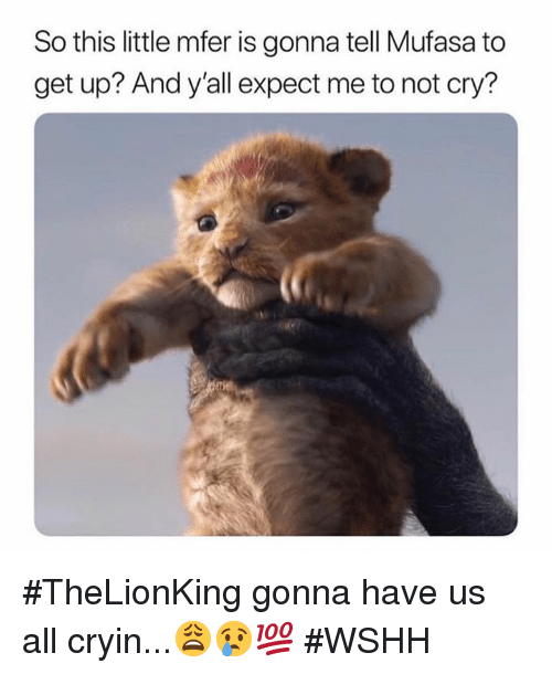 Wshh, Mufasa, and Hood: So this little mfer is gonna tell Mufasa to  get up? And y'all expect me to not cry? #TheLionKing gonna have us all cryin...😩😢💯 #WSHH