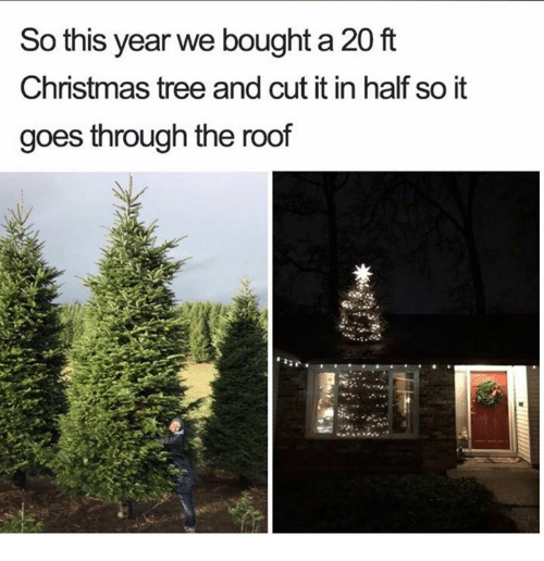 Christmas, Christmas Tree, and Tree: So this year we bought a 20 ft  Christmas tree and cut it in half so it  goes through the roof