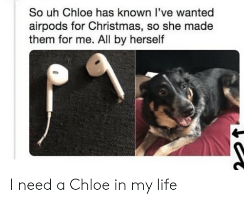 chloe: So uh Chloe has known l've wanted  airpods for Christmas, so she made  them for me. All by herself I need a Chloe in my life