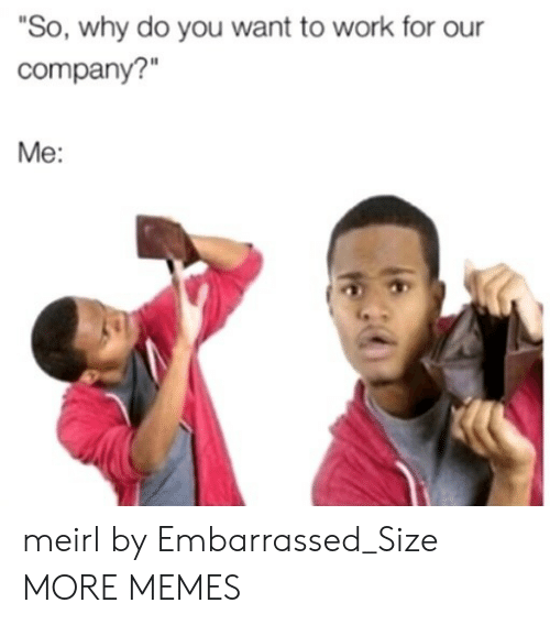 "Dank, Memes, and Target: ""So, why do you want to work for our  company?""  Me: meirl by Embarrassed_Size MORE MEMES"