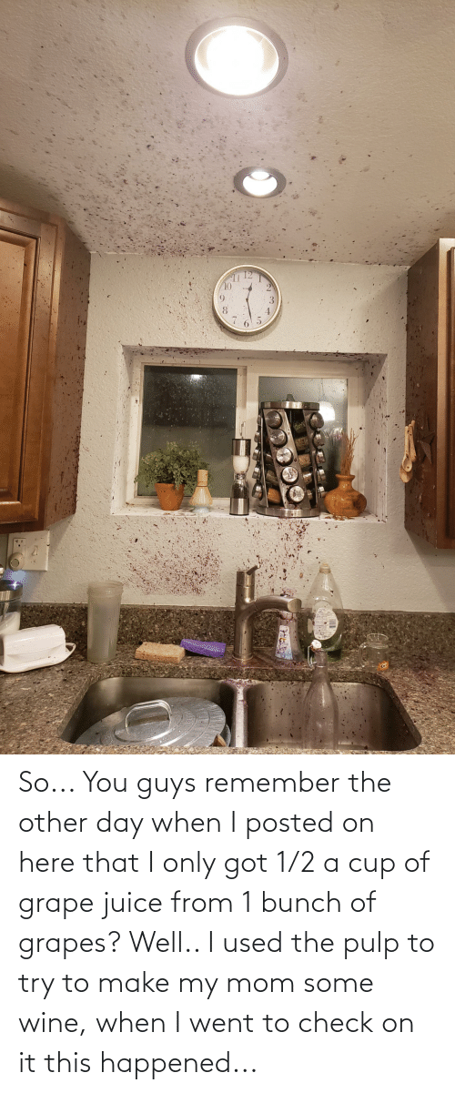 Juice: So... You guys remember the other day when I posted on here that I only got 1/2 a cup of grape juice from 1 bunch of grapes? Well.. I used the pulp to try to make my mom some wine, when I went to check on it this happened...