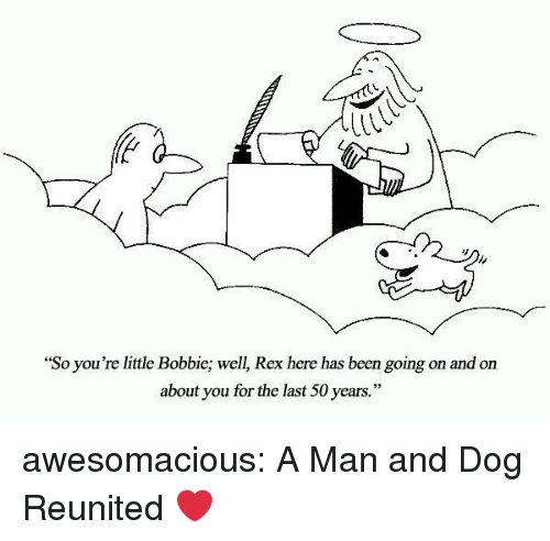 """Bobbie: """"So you're little Bobbie; well, Rex here has been going on and on  about you for the last 50 years."""" awesomacious:  A Man and Dog Reunited ❤"""