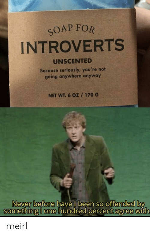 Never, MeIRL, and Been: SOAP FOR  INTROVERTS  UNSCENTED  Because seriously, you're not  going anywhere anyway  NET WT.6 OZ /170 G  Never before have l been so offended by  something I one hundred percent agree with meirl