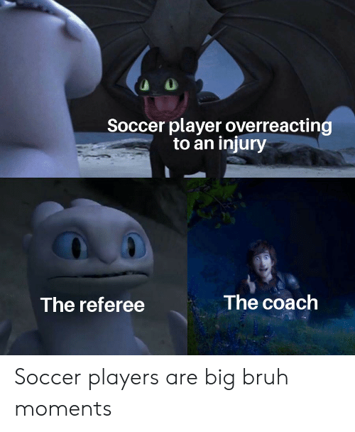 Soccer Player Overreacting to an Injury the Coach the Referee Soccer