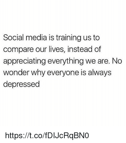 Memes, Social Media, and Wonder: Social media is training us to  compare our lives, instead of  appreciating everything we are. No  wonder why everyone is always  depressed https://t.co/fDIJcRqBN0